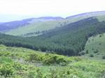 車山高原-2013.7.16
