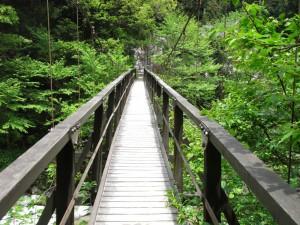 尾白川渓谷の吊り橋-2008.5.13