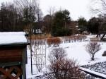 雪景色-20073.11