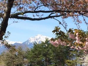 甲斐駒ヶ岳-2014.5.13