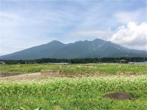 八ヶ岳-2014.9.8