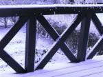 雪景色-2010.12.8