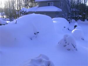 雪景色-2014.2.11