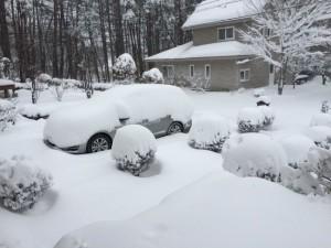 大雪に見舞われました-2016.1.18