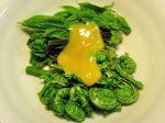 山菜の酢みそかけ-2016.5.31