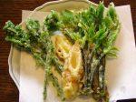 山菜の天ぷら-2016.5.31